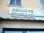 Fioreria I Girasoli Di Francesco Gioiello