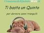 CessionedelQuintoWeb .it di Massimiliano Vicario