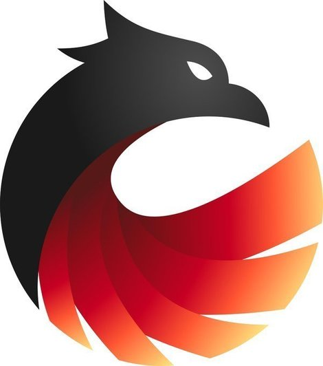 Phoenix Network