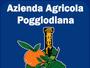 Arance poggiodiana ribera sicilia