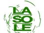 LaSoLe Est - Trucioli e Farine di legno